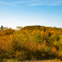 Autumn colors on the hillside at Copper Harbor