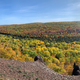Full Panoramic View of Autumn Forest from Raptor's Ridge