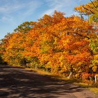 Leaves color on Brock Mountain Drive at Copper Harbor