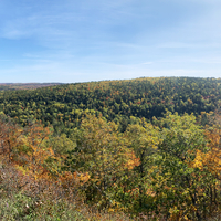 Panoramic View, autumn forest on earth