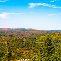 Autumn Trees with colorful trees in Sugarloaf Mountain