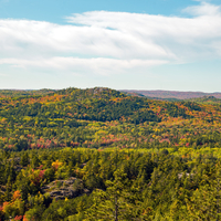 Forest Mountain colors in early autumn on Sugarloaf Mountain