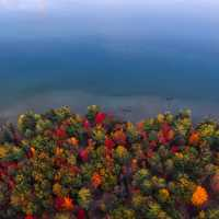 Great lake Shoreline with autumn foliage in Michigan