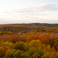Autumn Forest overlook at Dusk