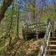 Steps up to the platform at Porcupine Mountains State Park, Michigan