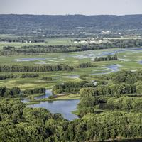 Lakes and Backwater landscape at Great River Bluffs State Park