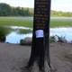 The Bob Flag at the Marker at lake Itasca state park, Minnesota
