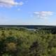 Park view from the tower at lake Itasca state park, Minnesota