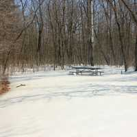 Picnic Place at Minnesota Valley State Park, Minnesota