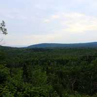 View of Superior National Forest, Minnesota
