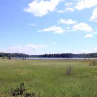 Landscape and lake at Voyaguers National Park, Minnesota
