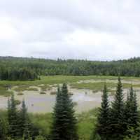 Beaver Pond overlook at Voyaguers National Park, Minnesota