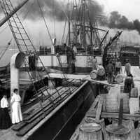 Steamer loading resin in Gulfport, Mississippi in 1906