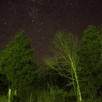 A very bright night sky at Ozark National Scenic Riverways, Missouri