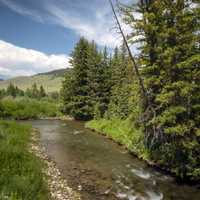 Madison River flowing their Beaverhead-Deerlodge National Forest