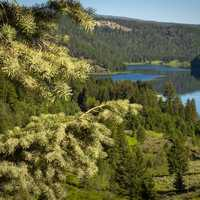Scenic Lake view in Beaverhead-Deerlodge National Forest
