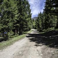 Start of the Mountain trail in Elkhorn, Montana