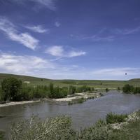Birds flying over the river in Montana