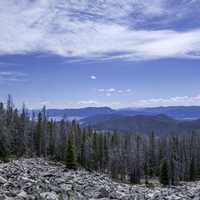 Mountaintop landscape with pine trees under the sky in the Elkhorn Mountains