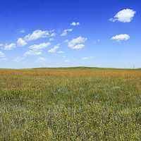 Grasslands Near Panorama Point at Panorama Point, Nebraska