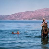 Ranger helping people out of the water at Lake Mead, Nevada