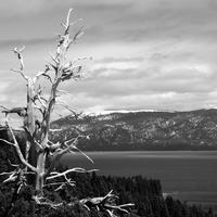 Emerald Bay monochrome landscape in Lake Tahoe
