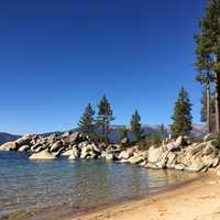 Forest on a Beach landscape in Lake Tahoe, Nevada