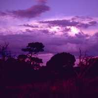 Purple Skies over Carlsbad Caverns National Park, New Mexico