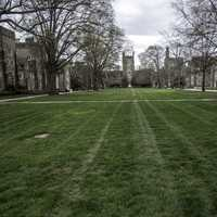 Lawn and Grass of the Duke Quad with the Chapel in the distance in Durham, North Carolina