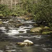 Cascading River Landscape in Great Smoky Mountains National Park, North Carolina