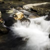 Close-up of rapids and cascades in the river at Great Smoky Mountains National Park, North Carolina
