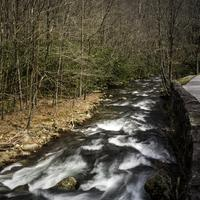 Downstream rapids in Great Smoky Mountains National Park, North Carolina