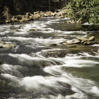 Rapids on the River in Great Smoky Mountains National Park, North Carolina