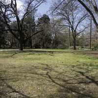 Empty Space in the Garden at UNC Chapel Hill, North Carolina