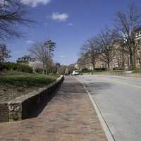 Road on the Campus of UNC Chapel Hill, North Carolina