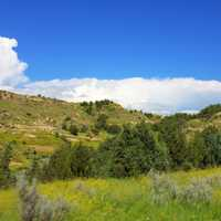 Hills, trees, and sky at Theodore Roosevelt National Park, North Dakota