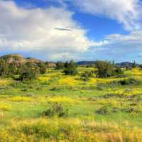 landscape in the valley at Theodore Roosevelt National Park, North Dakota