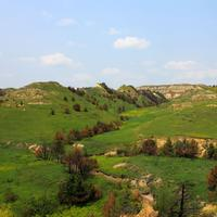 Trees and hills at Theodore Roosevelt National Park, North Dakota