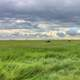 Cloudy day on the fields at White Butte, North Dakota