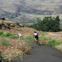 Bicycle Riders in the Columbia River Gorge