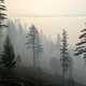 Smoke from the Taylor Fire sets into an inversion and envelops the Rogue River-Siskiyou National Forest, Oregon. (Forest Service photo by Cecilio Ricardo)
