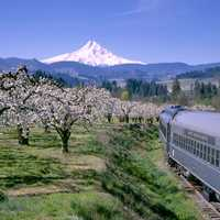 Landscape of Mount Hood from the railroad in Oregon