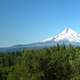 Mount Hood Rising beyond the forest in Oregon