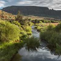 North Fork Owyhee in Oregon