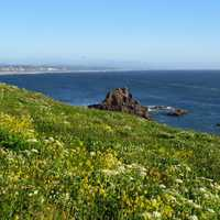 Yaquina Head Natural Area on the Oregon Coast