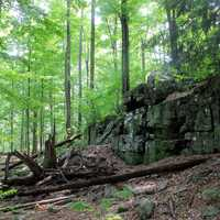 Rock at Promised Land State Park, Pennsylvania