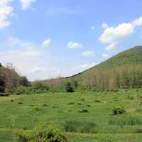 Meadow and Hills at Sinnemahoning State Park, Pennsylvania