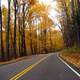 Autumn roadway between the trees in Great Smoky Mountains National Park, Tennessee