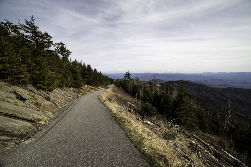 Clingman S Dome Trail To The Top Landscape In Great Smoky