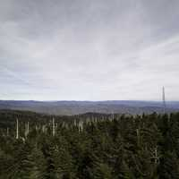Hills, radio tower, and sky with trees from Clingman's Dome, Tennessee